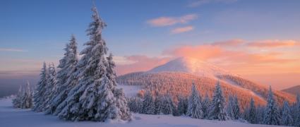 Лыжный поход по Горганам (4 дня)