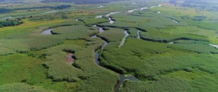 Прип'ять-Стохід. Сплав по Українській Амазонії (4 дні)
